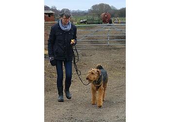 Fern Ember Dog Behaviour