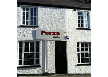 Forza Cycles