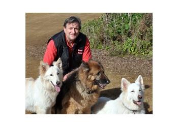 Four Paws Dog Training Club