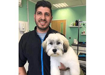 3 Best Pet Grooming In Sittingbourne Uk Top Picks January 2019