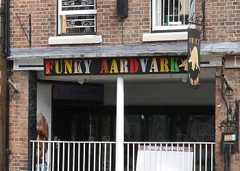 Funky Aardvark