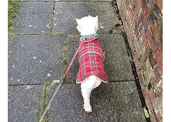 GK Dog Walking