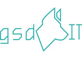GSDIT (Backup Data Ltd)