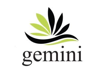 Gemini Painting & Handyman Service