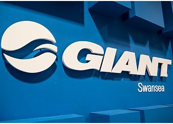 Giant Swansea