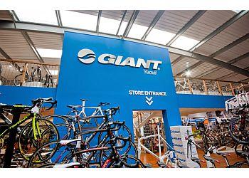 Giant yeovil