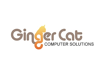 Ginger Cat Computers