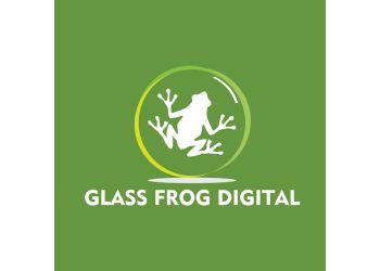 Glass Frog Digital