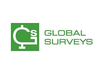 Global Surveys