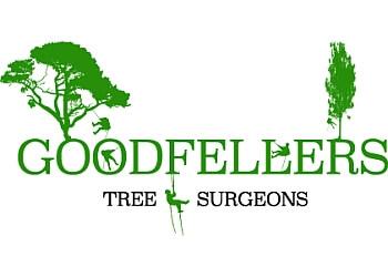 Goodfellers Tree Surgeons