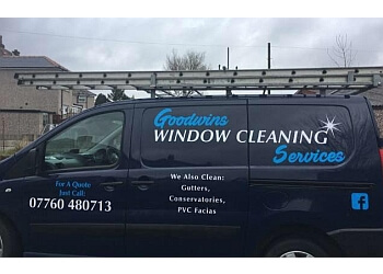 Goodwins Window Cleaning Services