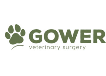 Gower Veterinary Surgery
