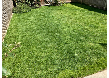 Grayfox Lawn Care