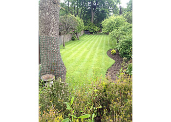 Greensleeves Lawn Treatment Experts