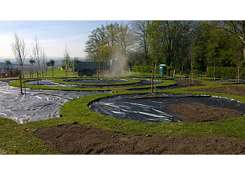 Grove Tree & Hedgerow Services