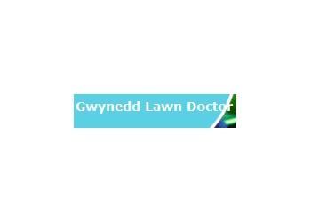 Gwynedd Lawn Doctor