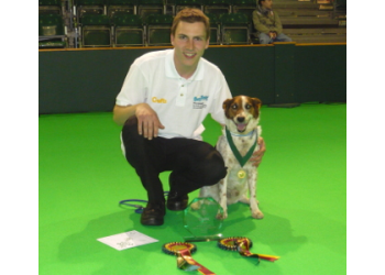 H&H Dog Training Ltd
