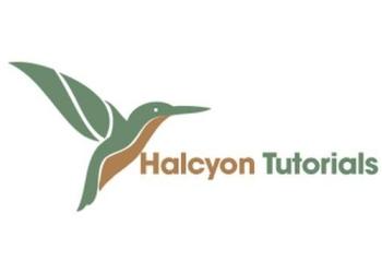 Halcyon Tutorials