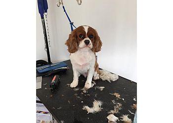 Happy Tails Pet Grooming Studio