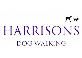 Harrisons Dogs