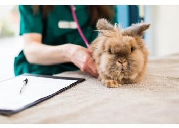 Haven Vets Ltd