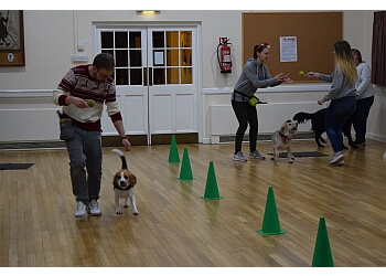 Headington Dog Training