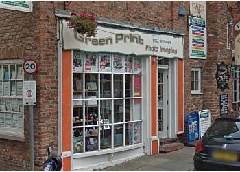 Hedon Green Print