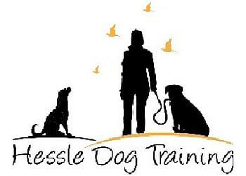 Hessle Dog Training