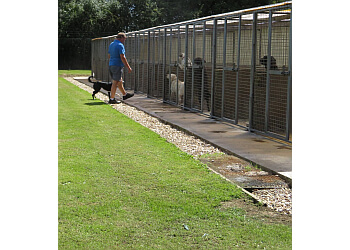 Holmleigh Boarding Kennels and Cattery