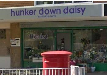 Hunker Down Daisy Ltd.