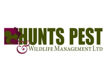 Hunts Pest and Wildlife Management Ltd.