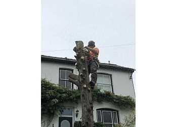 Hywel Jones Tree Services