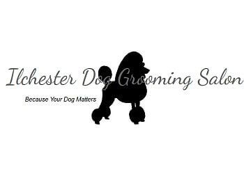 Ilchester Dog Grooming Salon