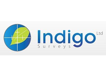Indigo Surveys