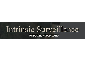 Intrinsic Surveillance