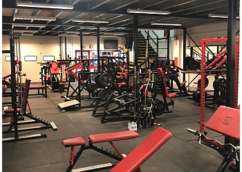 3 best gyms in maidstone uk  expert recommendations