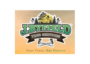 J Byfield Tree Services