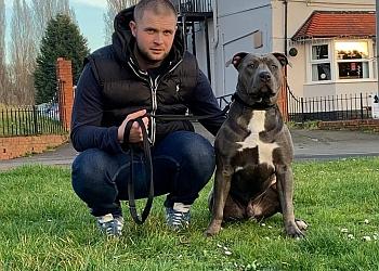 JK9 Dog Trainer