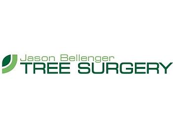 Jason Bellenger Tree Surgery