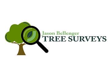 Jason Bellenger Tree Surgery Limited