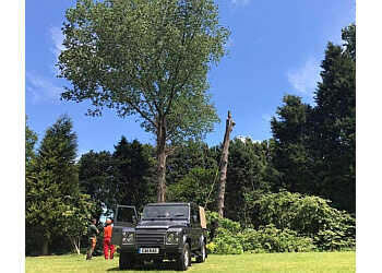 K.A.D Total Tree Care