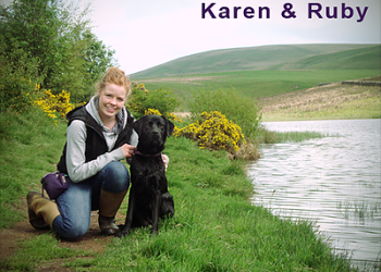 Karen's DOGS Training Centre