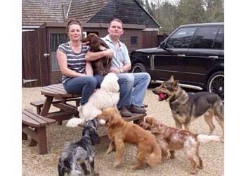 Kent Dog Walking & Kent DogTraining