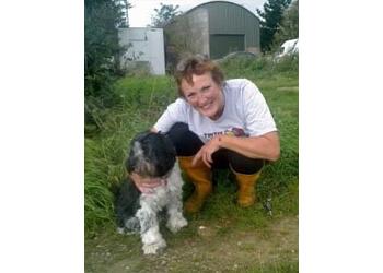 Kimpotter dog training