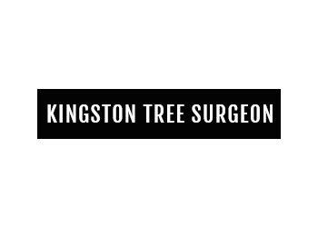 Kingston Tree Surgeon