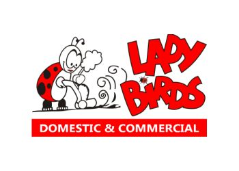 LADYBIRDS CLEANING SERVICES
