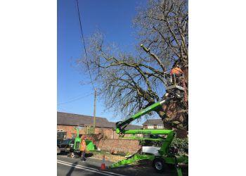Last Branch Tree Surgery