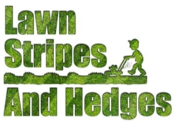 Lawn Stripes and Hedges - Garden Maintenance Service