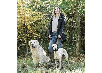 best dog trainers near me