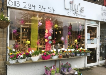 Lily's of Bramhope Ltd.